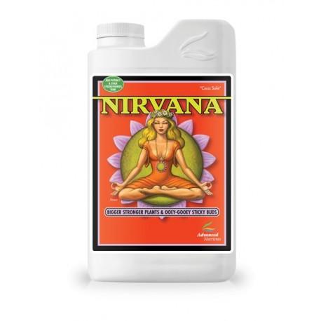 Nirvana 1l