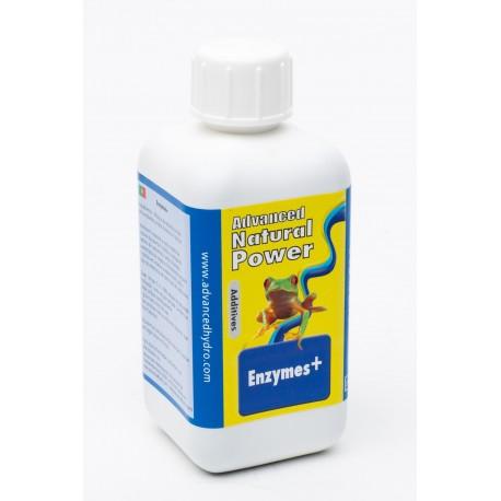 AH Enzymes +